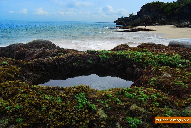 tegal-wangi-beach-jimbaran-6 bee amazing